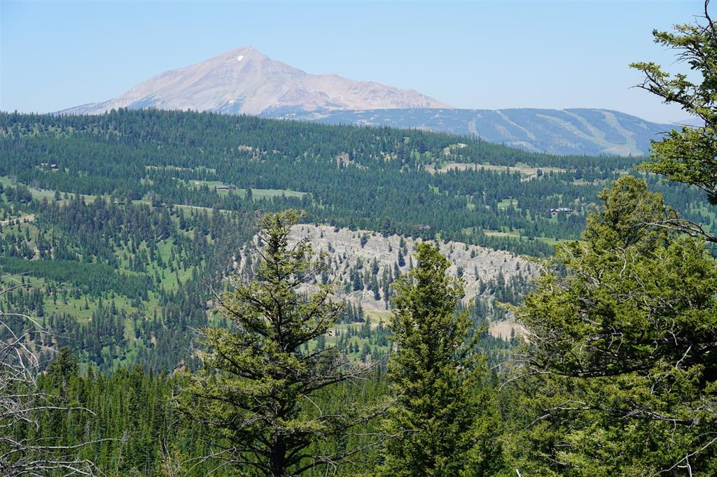 Stunning views of Lone Mountain as well as the Spanish Peaks and toward Buck Ridge.  Forested west facing lot with abundant grassy meadows.  Beautiful building site with clear views to Lone Mountain and the surrounding mountains.  Relatively level lot with easy access to the Beaver Creek West road.  Two adjacent lots, totaling 34+/- acres are also available to create one 54+/- acre block.  Additionally there is another two 20+/- acre lots available for a total of 94+/- acres.  Motivated sellers.