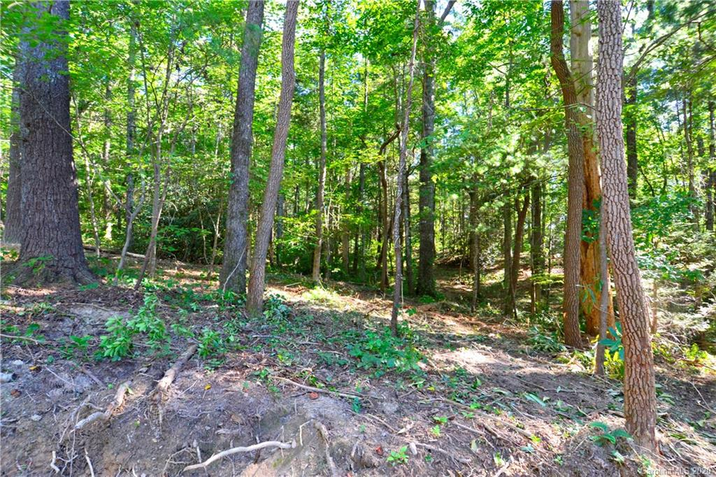 Fantastic location right off of Charlotte Hwy. This new agrihood has a wonderful area for a community garden with and old rustic barn. 3, 1/2 acre lots available. Most lots have south west views. These lush wooded lots are level to sloping. 1200 sq ft minimum to build. Land home packages, exclusively built by Cool Mountain Construction with many floor plans to choose from.