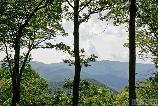 TBD Highland Gap Road, Scaly Mountain, NC 28775