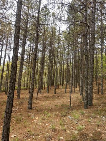 2 K. Trail, Tuskahoma, OK 74574