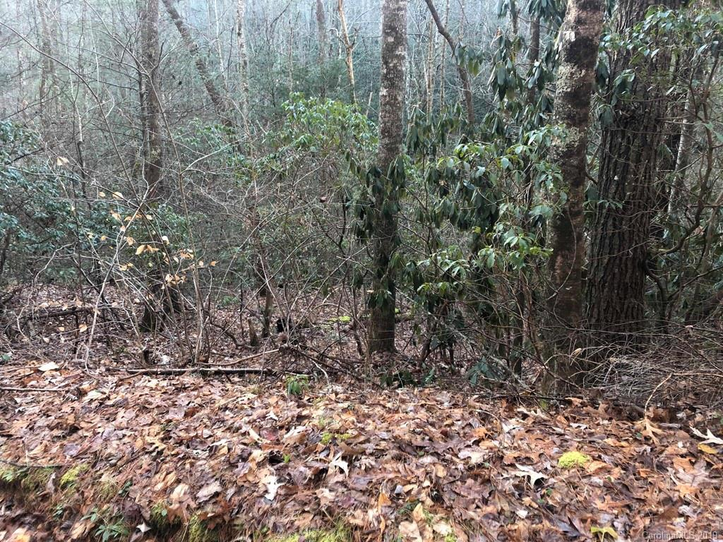 Tucked away private just over 2 acre lot.   Build your dream home here and enjoy listening to the sound of nature and the creek on your property.