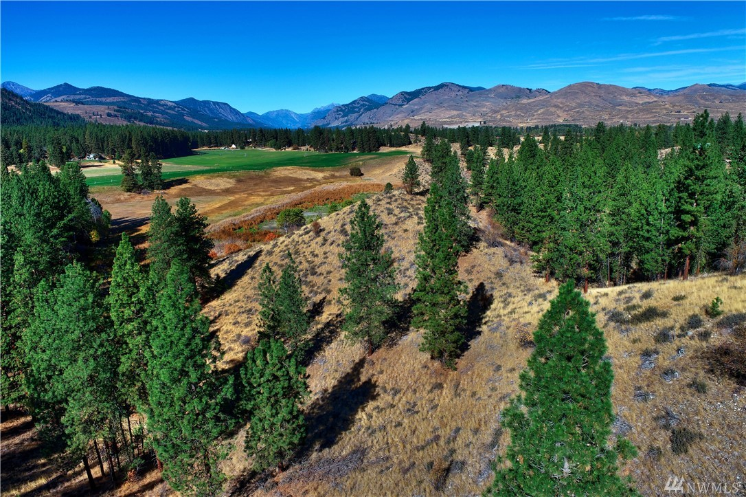 3.14 acre view parcel with two ideal SW facing homesites, one nestled in a saddle and one on top of a ridgeline.  Views of mountains and irrigated fields make a picturesque backdrop from any future window. Walk to year round Methow Trail ski/snowshoe/and biking trails from your home.  Just a few miles from Winthrop city limits for easy and fast access to all commodities, minutes from the local schools.  Community pool, park, basketball & tennis courts. Power in road. Seller will carry contract.