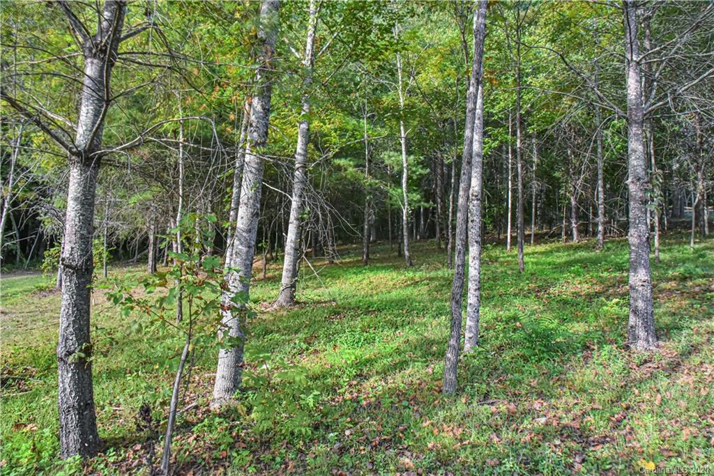 Brand new Subdivision in Fairview.  Fantastic location right off of Charlotte Highway.  This Agrihood has a wonderful area for a community garden with an Old Rustic Barn.  4 - 1/2 Acre lots available.  Most lots have south west views.  These lush wooded lots are level to sloping.  1,200 SqFt minimum to build.  Land home packages, exclusively built by Cool Mountain Construction, Inc. with many floor plans to choose from.