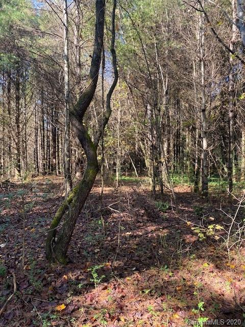Located just off Highway 64 near Edneyville lies Clark Rd and your chance to own a lot/home in a BRAND NEW SUBDIVISION. Flat lots that will offer EOP (Engineered Option Permit) septics with well sited. Plat is recorded and each lot will consist of approximately 0.60 acres. Deposits can be accepted now.
