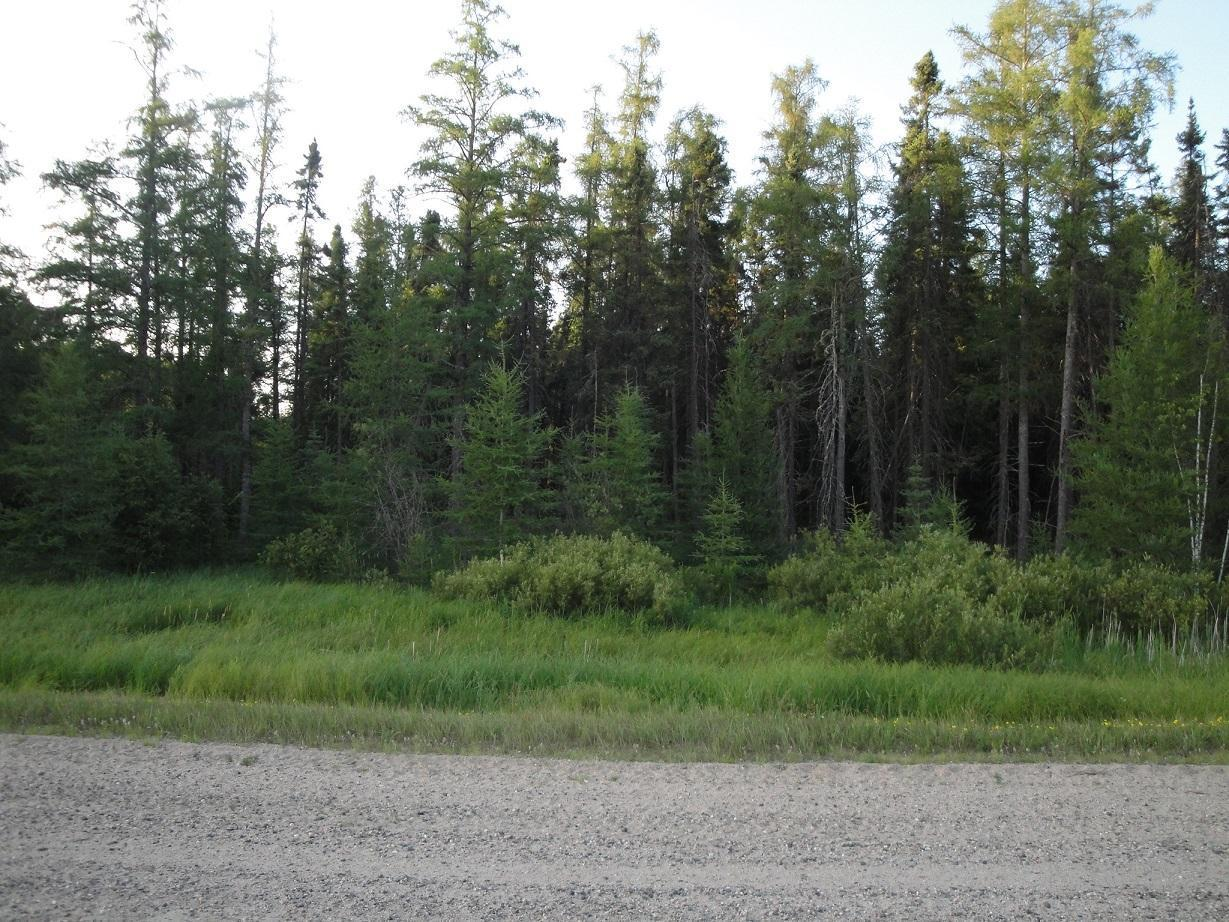Very private, heavily wooded, 40 acre parcel, minutes from Nashwauk. Lots of timber to log off, one very nice building site and  lots of wildlife. Excellent recreational opportunity or beautiful building lot.