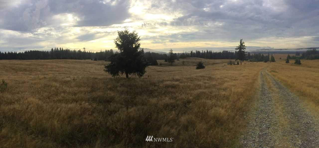 Possibly the most spectacular contiguous Ranch over 1000 acres in Western Washington. Mt. Rainier, Mt. St. Helens in plain view, rolling grassy meadows, resident elk herd, zoned R-1-5. Per Thurston County draft HCP the consultant they hired valued the Prairie Acres between $11,000 and !4,000 per acre as Pocket Gopher mitigation. 90 acres of site are inside Tenino City Limits and zoned Master Plan Community.