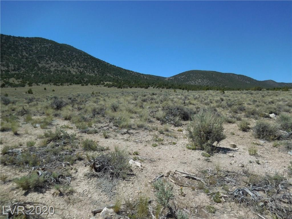 National Forest Rd. 427, Mc Gill, NV 89318