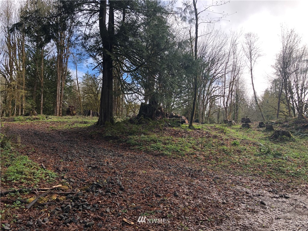 10 acres of endless possibilities!! Quiet and secluded just off Old Belfair Highway. Partially level homesite overlooking Courtney Creek and mature evergreens. Create a lavish estate or mini farm w/pastures or bring your toys. There is plenty of room to run & play! Power on property. Tree clearing process started last year for homesite & arena/pastures. Copy of septic designs on file. Buyer to verify all aspects of property & uses.