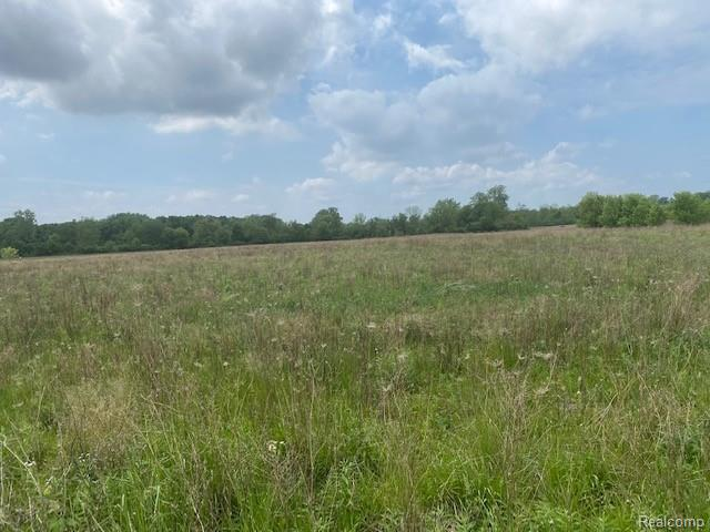 Amazing 5.42(+/-) Acres, wonderful country setting very tranquil, Close to M-52 and I69. Build your dream home! Perry Schools. Possible short-term land contract. Hurry!