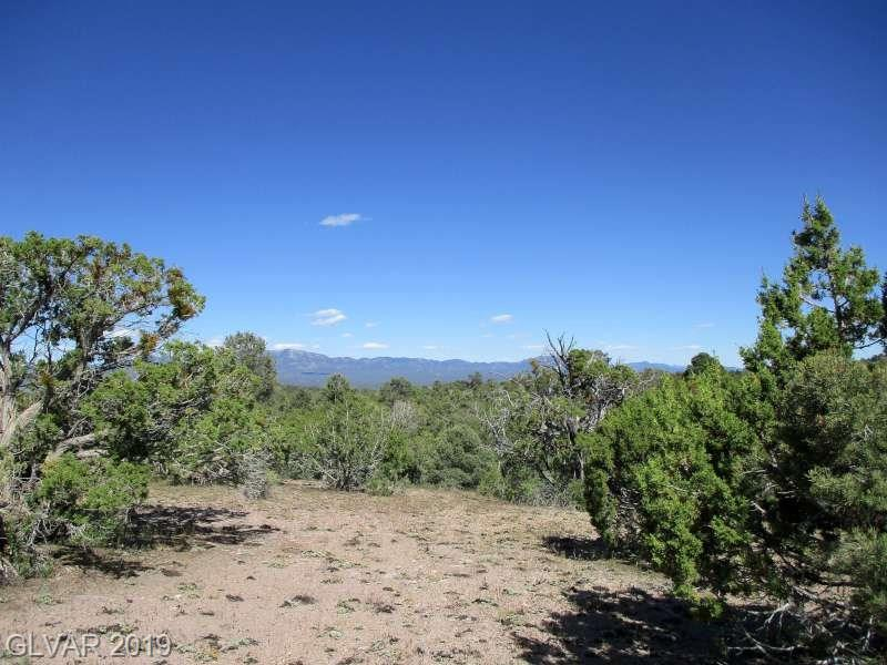 Malloy Springs Rd, Pioche, NV 89043