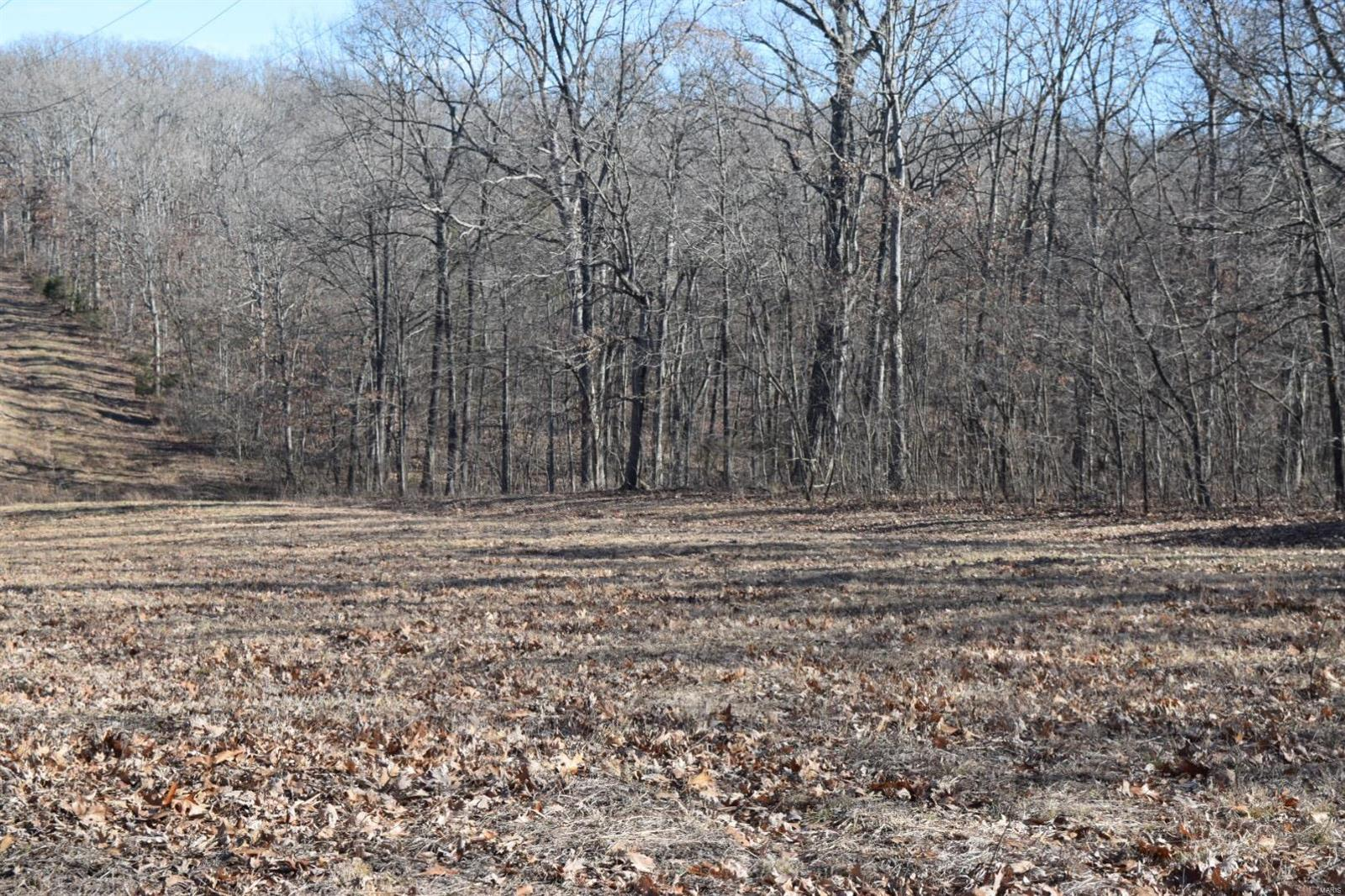 Endless possibilities with this 34.24 Acre lot in Wright City! Build your dream home or several homes on this picturesque, mostly wooded lot w/a small peaceful stream running through the property. There are no utilities on site, but electric, telephone, and public water are close by. Conveniently located just 15 minutes from Hwy 70. Don't miss out on this AMAZING opportunity.