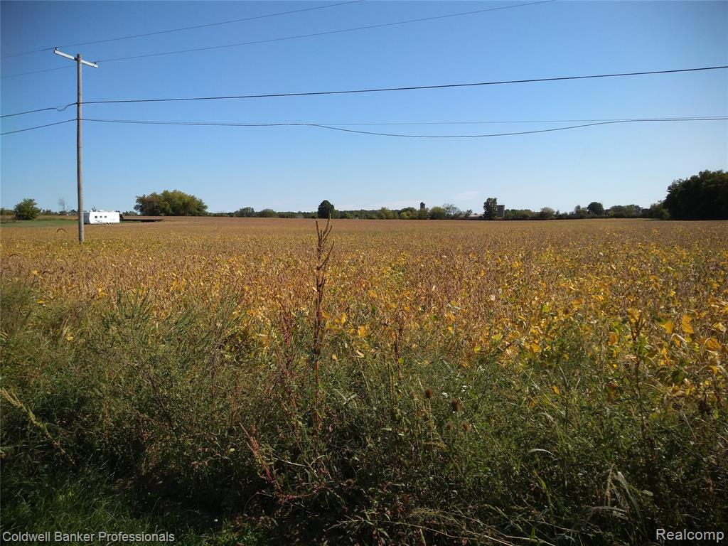 Build your dream home or hobby farm on this nice 32 acre parcel. South side is tree lined- property is irregularly shaped- survey in the documents section. This is parcels A, B and D each with a separate tax ID number. Excellent location. Rural setting but near Van Dyke and I-69. Subject to crop rights