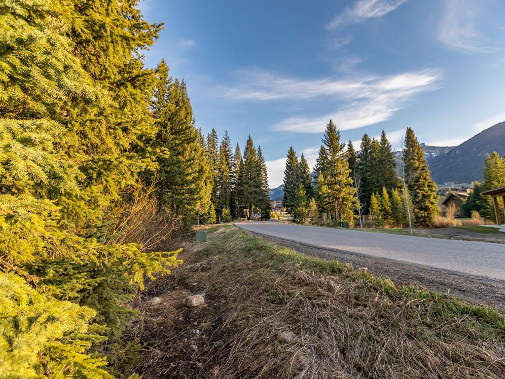 Want the convenience of living near the Town Center and Meadow Village of Big Sky? 0.28 acres on Two Moons Road is a great location for walking, biking or driving to the amenities of Big Sky or the golf course for summer and winter activities. Plenty of privacy with old growth trees.
