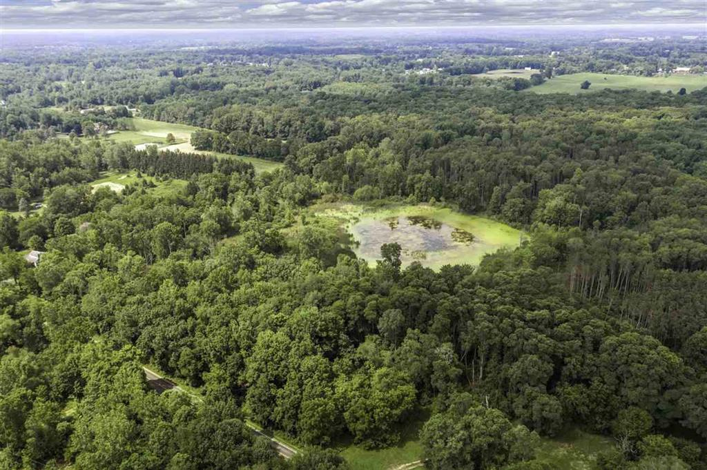 Best 40 acres in Western School District.  Wooded, small area for planting, pond, and two identified possible building sites.  Fantastic deer, duck, geese, small game hunting.  Lots of mature trees and trails for hiking. Current use is Hunting,Recreational.