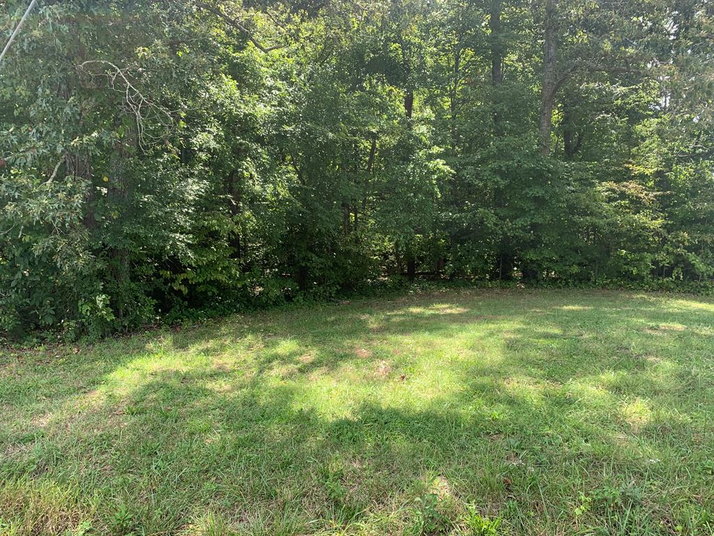 Level and wooded +-1.82 Acres, utility water available, location is incredible, property possibly can be subdivided into 2 tracts by new owner.