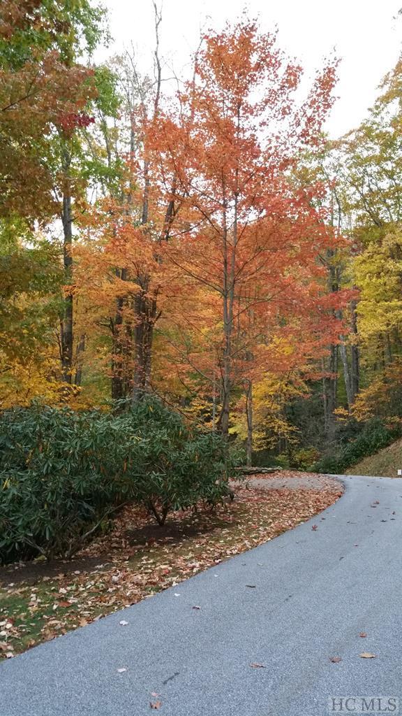 1334 Highlands Cove Drive