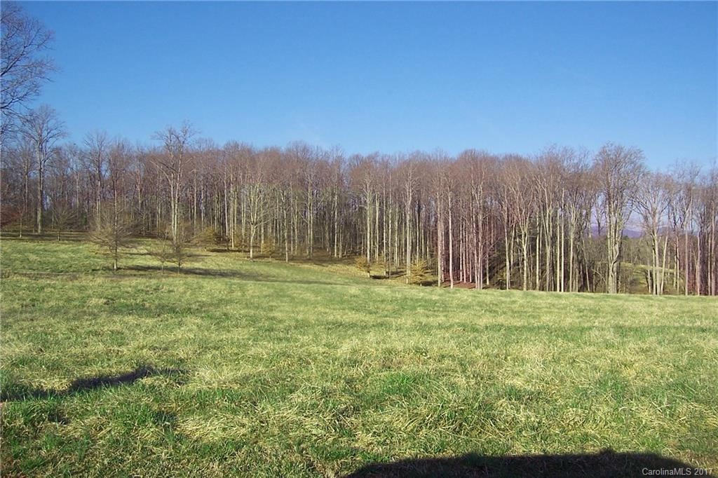 Located in Golden Hills of Fairview Farms this parcel - a mixture of well developed pasture and hardwoods - is a part of a 500 acre equestrian community with extensive private trail system. Parcel has over 1100 feet adjoining Greenspace of Fairview with 1331 acres under Conservation Easement. Trails are directly accessible from the tract and cover over 1000 acres. Approximately 6 plus acres in pasture and could be more. Mountain views -  A special opportunity for one looking for the best. Come enjoy the beautiful trails either on horse back or a leisurely walk with your dog. Priced significantly under tax evaluation. 15 Minutes to TIEC. 30 Minutes to Greenville airport .  40 to Asheville airport .  90 Minutes to Charlotte airport  Grocery and shopping 10 minutes away.    Beach only 3.25 hours away