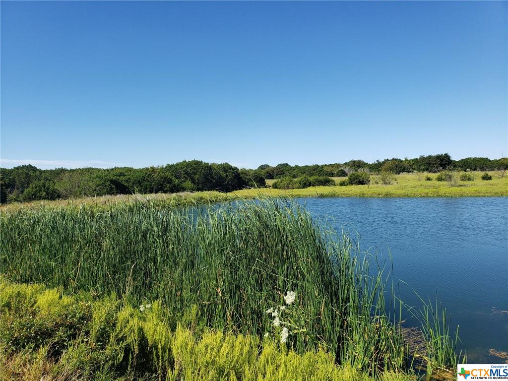 This beautiful Hill Country land is unrestricted and boasts plenty of hardwoods and has live water. Great for hunting with rolling terrain and two water ponds, one you can fish out of. Electricity is available. Frontage road is paved. don't miss out on this, it wont last long.