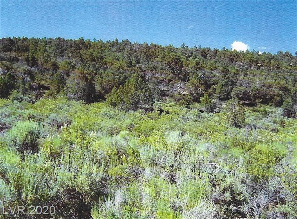 Robbers Roost, Other, NV 89311
