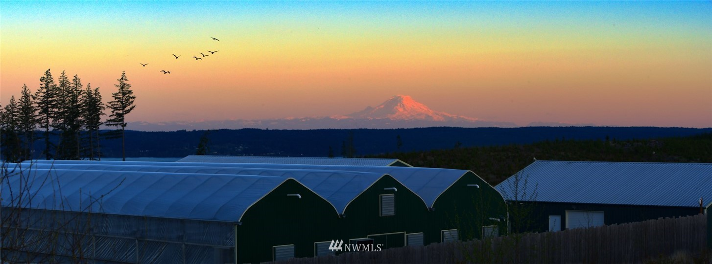Established, turnkey Tier 3 Cannabis producer / processor. Sale includes all equipment & fixtures. Great producing well, 3 phase power & septic keep the utility costs down. You will have total seclusion & privacy from this incredible 20 acre site. Plenty of room for expansion, a home, ADU & garages of any size. Enjoy panoramic views of the Olympic Mtn & Cascade Mtn ranges from this High Point. It even has a shared airstrip. Located in scenic Jefferson County WA. A wonderful place to live and work.