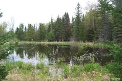 Great up north get-a-way spot! 18 acres of wooded land.