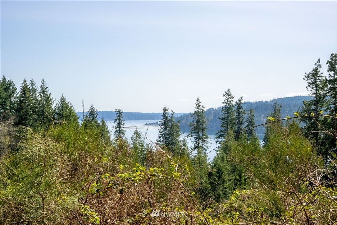 Peaceful, Private, & ready for your building plans or RV! This beautiful 5.1 acre parcel has partial views of Hood Canal & mountains from the upper area, & is partially cleared & easy to walk. No CCR's here! Water & power on the site. Geotech done. 5/bd GRAVITY septic design is awaiting final w/ the Health Dept. Located within minutes of the Hood Canal Bridge and Shine Tidelands State Park offering 249 acres on the Hood Canal for your enjoyment! This centrally located property offers quick access to Port Gamble & Chimacum, & is just 20 minutes to Central Market in Poulsbo & 20 min. to Kingston. Enjoy living at the doorstep of the Olympic Peninsula, yet close to all the amenities you love! Must be accompanied by your agent to walk property!