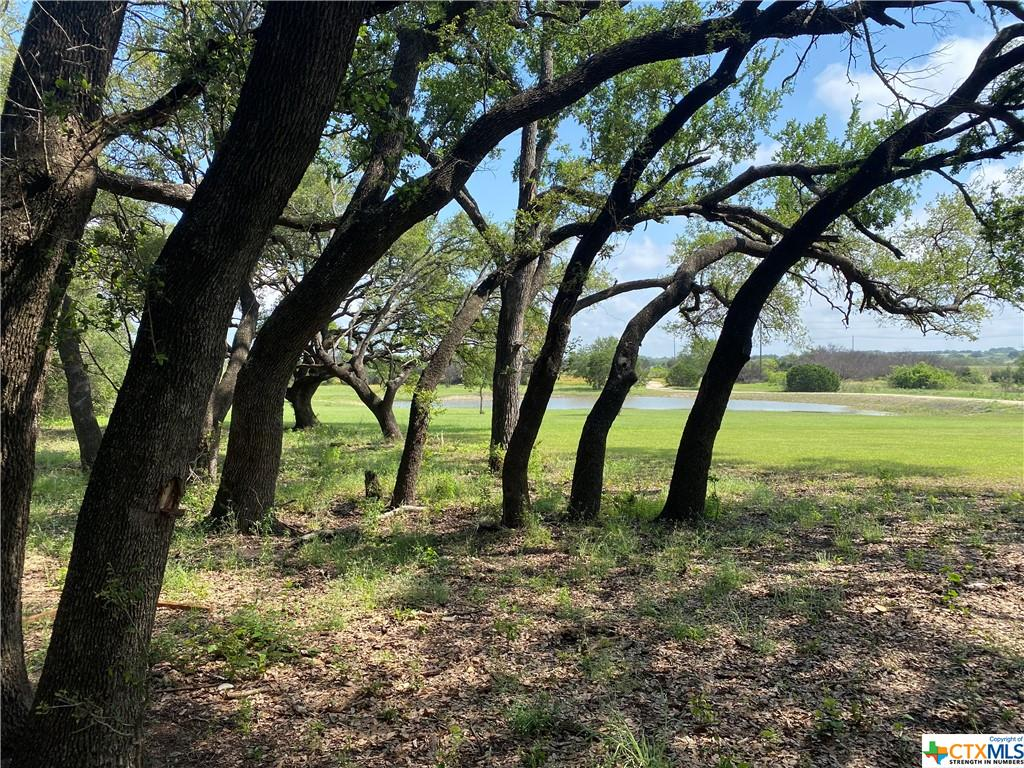 Located just 40 minutes North of Austin on Highway 183! This is the Ultimate Equine Property and Hunter's Paradise all in one! This gorgeous 199.93 acres has two large tanks, a creek, gorgeous views, sunflowers and oak tree groves that will take your breath away! It is Equipped with a house and Barndominium, along with an impressive Equine Facility. There's plenty of room for your horses between the Indoor 22 Stall Horse Barn, Covered 24 Stall Horse Barn and paddocks with loafing sheds. The two arenas, both with amazing views, are something special! This could really be a state of the art Venue, investment property, weekend oasis or HOME. Contact Listing Agent for full list of equipment.