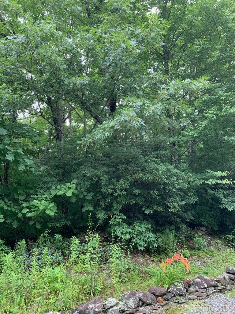 Two great building lots with lakeside access close to town in the popular Rhododendron Trail community.