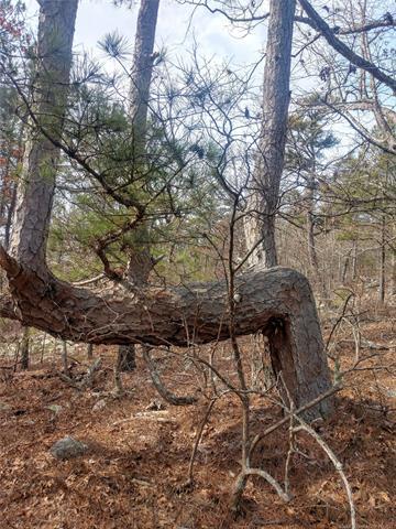 5 K. Trail, Tuskahoma, OK 74574