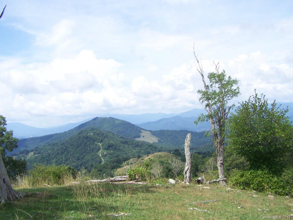2504 Crabtree Mountain Road, Canton, NC 28716