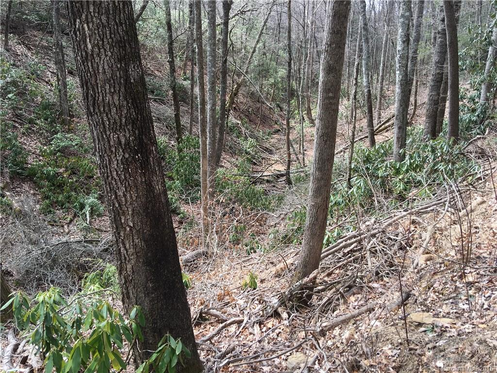 Long valley with year round creek, ideal for pond, road to home-site above creek, totally private, more land available, up to 31 acres $375,000 MLS# 3155768,  huge trees, unspoiled natural beauty, area of large tracts with cabins and year round homes. 999= Tax Value and Taxes TBD