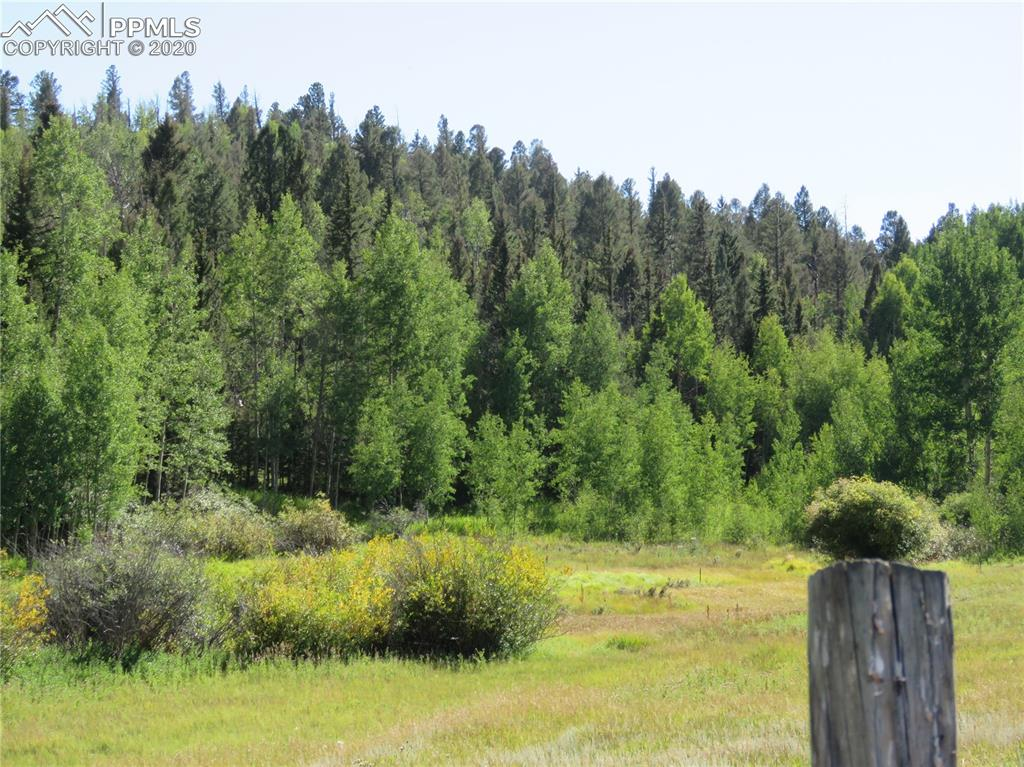 Four lots together create a large acreage with multiple sites for building or recreation. County road access. Power nearby.