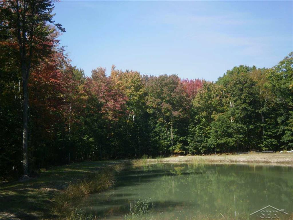 40 Acres of wooded property with a 4.9 acre pond. This property has great potential for private use or can be divided for building sites around the pond. Also has excellent potential for Geo-thermal heating and cooling. To be split from larger parcel. Additional acreage available. Call listing agent for survey & disclosures information.