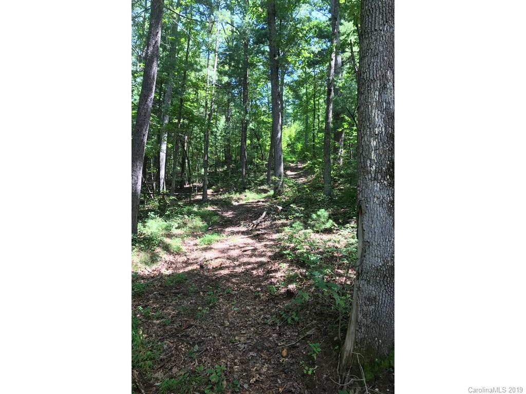 Beautiful Lot in desirable Historic Flat Rock! Come see this wooded lot which is very convenient to Hendersonville and Flat Rock. This location is a great site to build your dream home and have that quiet, country feel. 
