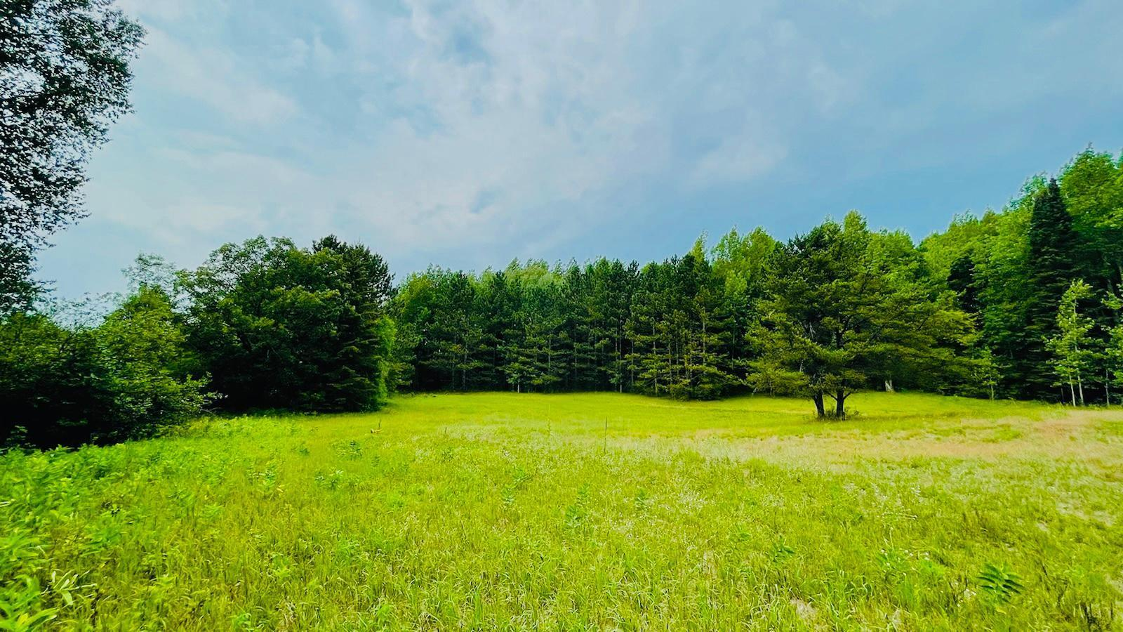 """Selling """"As Is"""" Property has dilapidated dwelling, removal at buyers expense.  Beautiful private wooded acreage with build site already cleared. Convenient to town and all that Brainerd Lakes has to offer."""