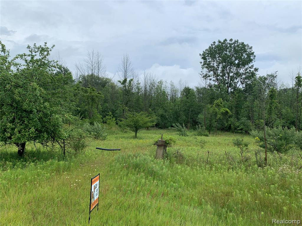 Over 1200' of water frontage on beautiful Lake Huron with plenty of seclusion with over 37 acres of wooded property. This is excellent deer hunting property! City water and natural gas available at the road. Beautiful spot for your new home!
