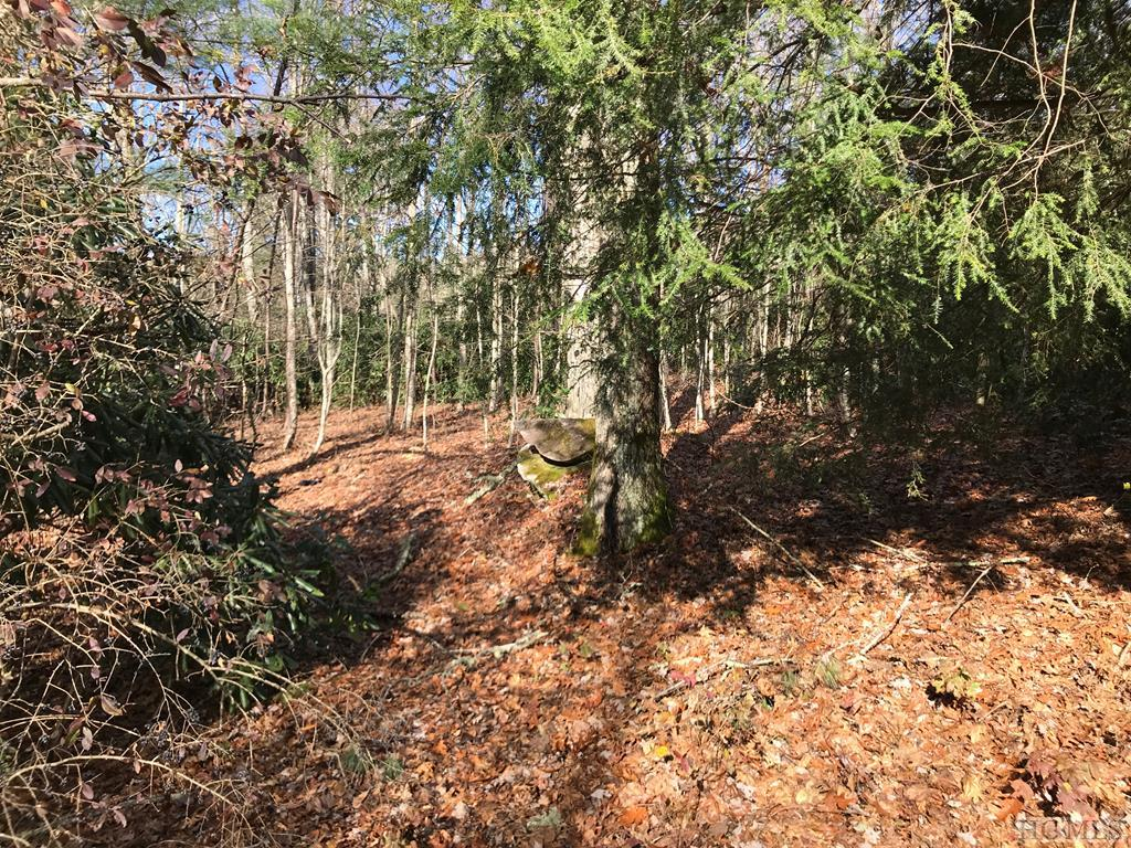 TBD Shelby Drive, Highlands, NC 28741