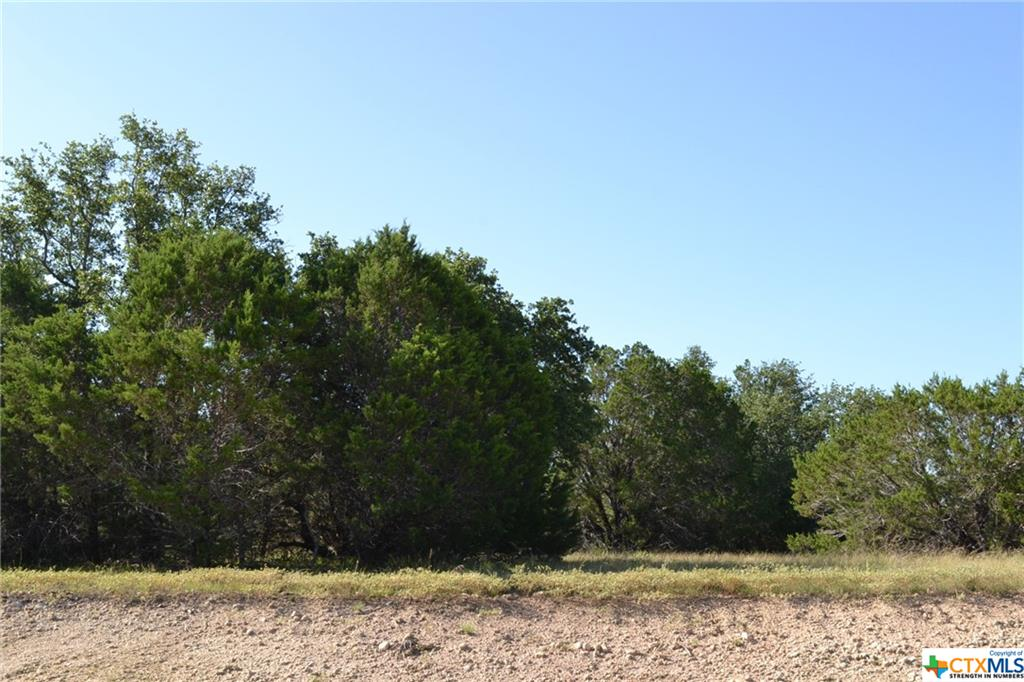 1.036 ACRE LOT IN LAMPASAS RIVER PLACE PHASE TWO ** THIS LOT IS LOCATED ON A LOW TRAFFIC CUL-DE-SAC. ~ Come build your dream home here in sought-after River Place in Kempner. River Place is a subdivision where neighbors walk, jog, and ride bicycles. Lots are mostly flat and some are gently sloping. River Place has many majestic old oak trees. Some lots have river frontage on the Lampasas River. Come home to the country, yet be a short drive to the amenities and conveniences of Fort Hood, Lampasas, Kempner, Copperas Cove, Killeen, Harker Heights, and the local areas. Austin is just over an hour's drive away. The County Roads in River Place are paved. An ornate entrance is being built for the entrance off FM 2313. Community mailboxes will be installed. You can choose any builder and build when you are ready, remembering that deed restrictions are in place. There is no timeline to build. Utilities for River Place are provided by Hamilton County Electric Coop, Kempner Water Supply, and on-site septic. The water lines and power lines are in. Come and visit Lampasas River Place today!