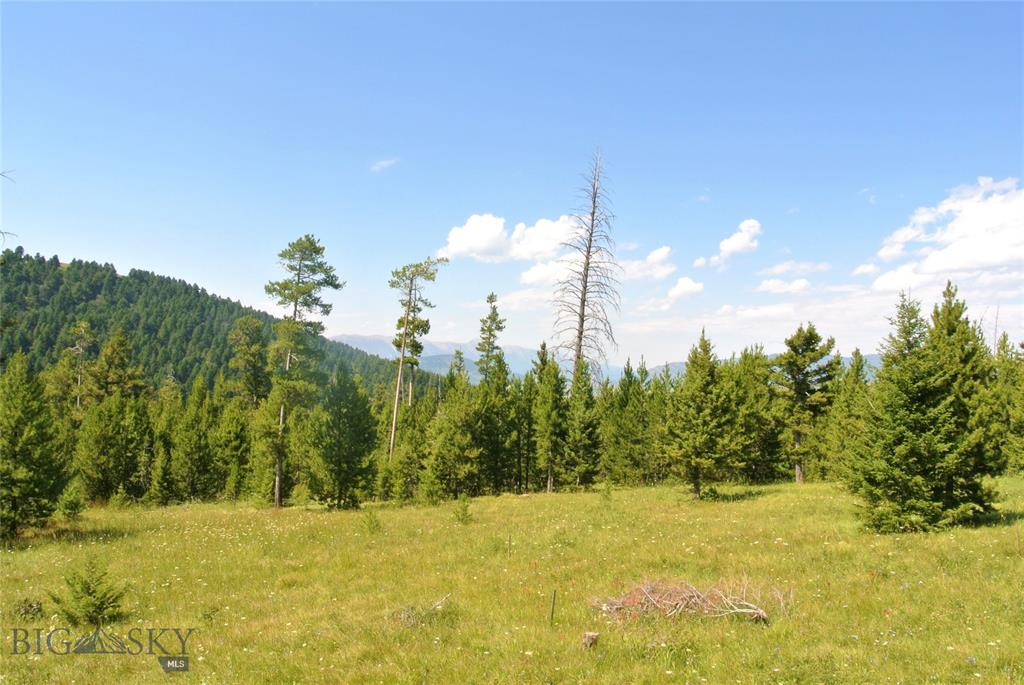 Beautiful wooded lot in a desirable subdivision only 20 mins from Bozeman.   Central water is in.