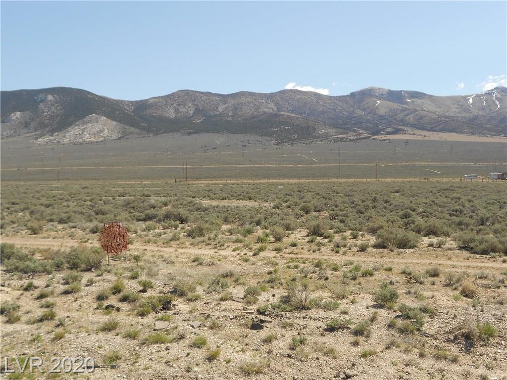 2277 N McGill Highway, Other, NV 89301