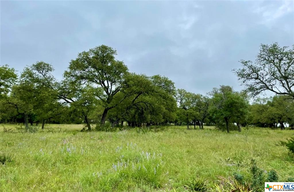 Nestled in the Texas Hill Country. Just minutes away from Lampasas, Hwy 183, and Hwy 281. Double OTT Ranch offers Texas Hill Country Living at its finest. Chipseal paved roads, Corix water, and Electric available at each tract. Located off W FM 580, just a short drive from Fiesta Winery and Stoneledge Winery. Light restrictions, Ag Exempt, Hunting Allowed.  There property has nice elevation changes with plenty of options for potential homesites that can take full advantage of the beautiful hardwoods and hill country views. Nice mixture of potential grazing land, hardwood trees, and some denser wooded areas. Ample White tail Deer, Turkey, and other wildlife. Looking for a Convenient, Private, and Peaceful property, this one is a must see!