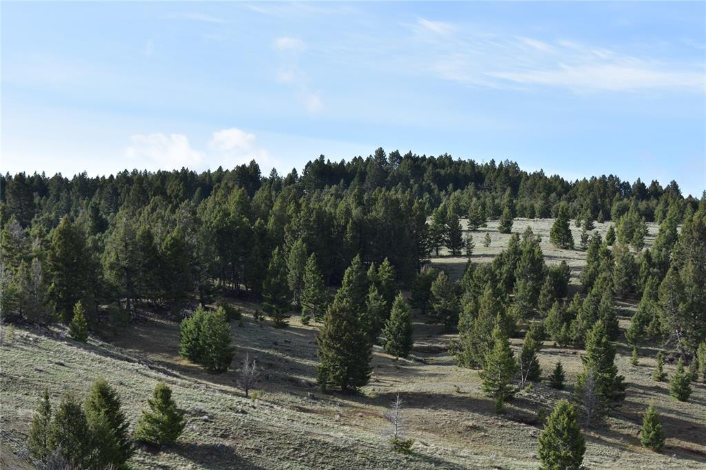 TBD Basin Creek Road, Butte, MT 59701