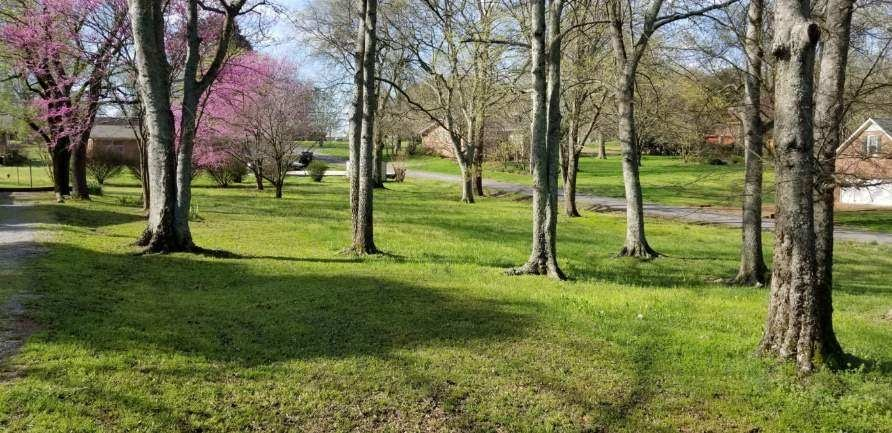 Great building lot in a very nice area.  The owner and my self are both General Contractors and can build your plans if you want a price.  Lot can be sold with out us building.