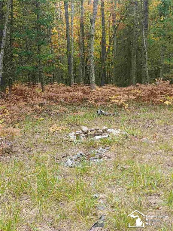Welcome to this Beautiful 10 Acre parcel in Northern Michigan.  Build your dream home, cozy escape cottage, hunting cabin or retirement home on this lovely wooded property.  Great for deer and turkey hunting.