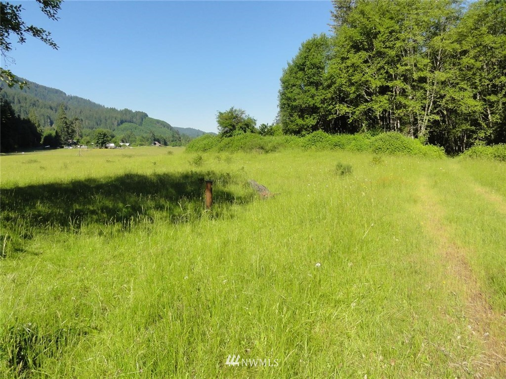 Pond on Property, excellent for summer camping and elk hunting. The property is near the Cowlitz River for good fishing. Two parcels with 43 acres total must sell together for access reasons.  Considerable timber value.  Timber cruise available to qualified buyer. Property is in flood plain.