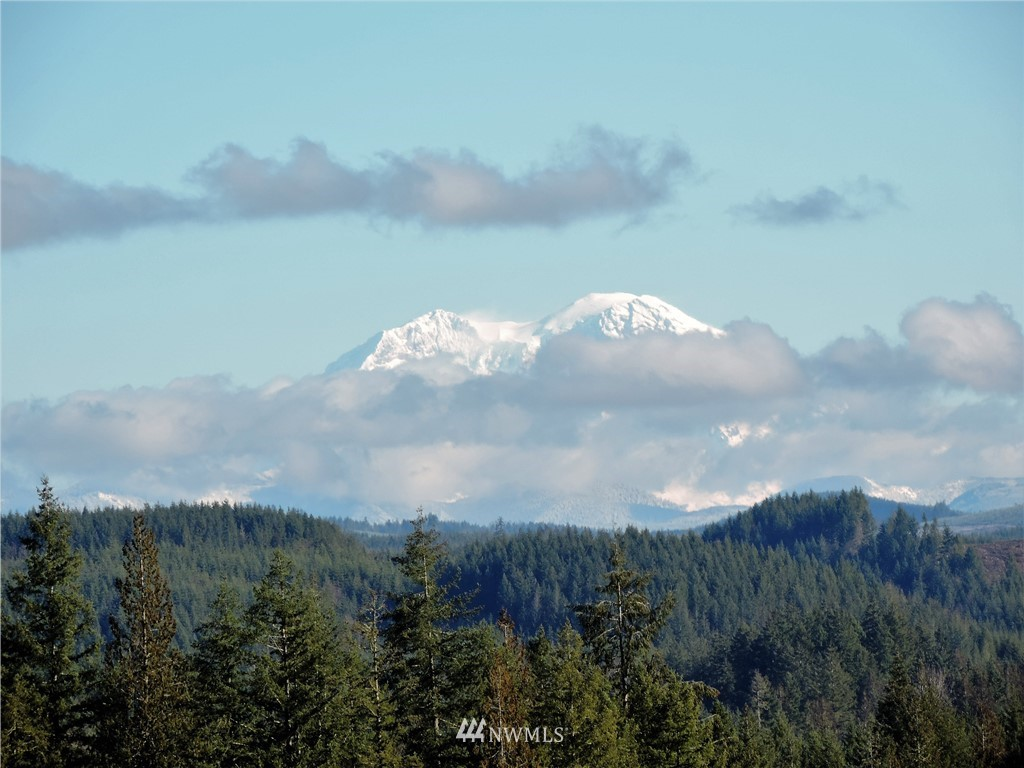 Incredible Views of Mt St Helen & Mt Rainier from this 115 acre tree farm just minutes from town. This has paved county rd, power & Phone and is surrounded by timberland's and farms. Build your home on top of the world and watch the deer & elk from you porch and your investment grow with the trees. This is in forest land for low taxes.