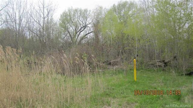 If you are looking for hunting land that is minutes from downtown Port Huron this is the property for you. This property is zoned for heavy industrial but has 20 acres of beautiful land that has been untouched for more than 30 years and is one of the only areas still left within Port Huron where you are allowed to hunt. Do not walk this property without permission or appointment.