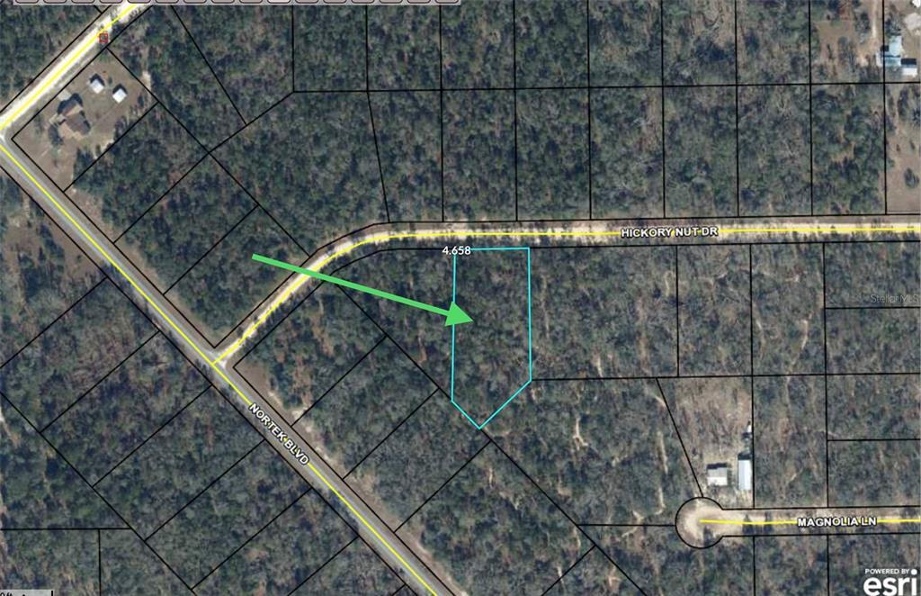 Hickory Nut Drive, Marianna, FL 32448