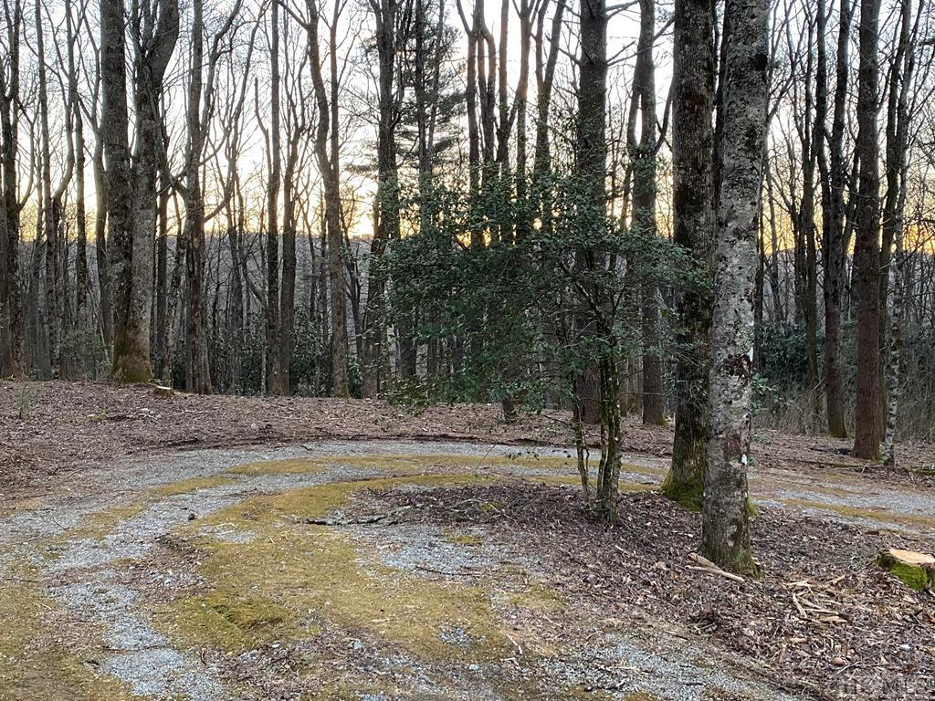 "Just listed:  this beautiful, gently rolling 1.05 acre lot has winter views of Brushy Face mountain and is located just off of Satulah Road.  This ""walk to town"" lot is set in a beautiful, wooded enclave, from which you can walk to area pubs and restaurants in less than ten minutes.  All of Highlands Main Street is close by.  The Estates of Satulah lots were once part of the Bascom estate, ""Chetolah,"" which was built by Highlands's second mayor, Henry Martin Bascom, in 1892.  The Satulah Road Historic District is noted for its fine homes, large lots, views, privacy and tranquility.  If you are looking for an in-town location, with the privacy of a country estate, this is the home place for you."