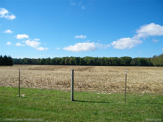 Great investment opportunity!  37.11 acres zoned R2 and approved for subdivision.  Natural gas and sandy soils. Located across the road from Deerfield Township Park. Easy access to M-24, stores, golf courses and schools. Additional 36 acres is open/farmland and has some woods. Property has two tax id numbers: 00600901605 and 00600901500.  Excludes 2021 crop rights.